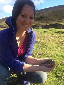 Claudia holding a Lapwing chick during a ringing excursion